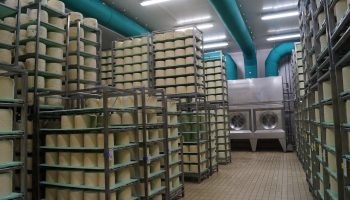 Cheese Process Air Treatment rie