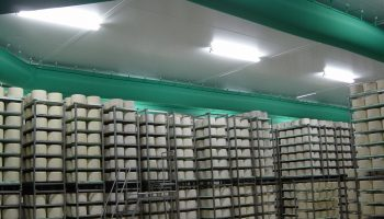 Cheese Process Air Treatment